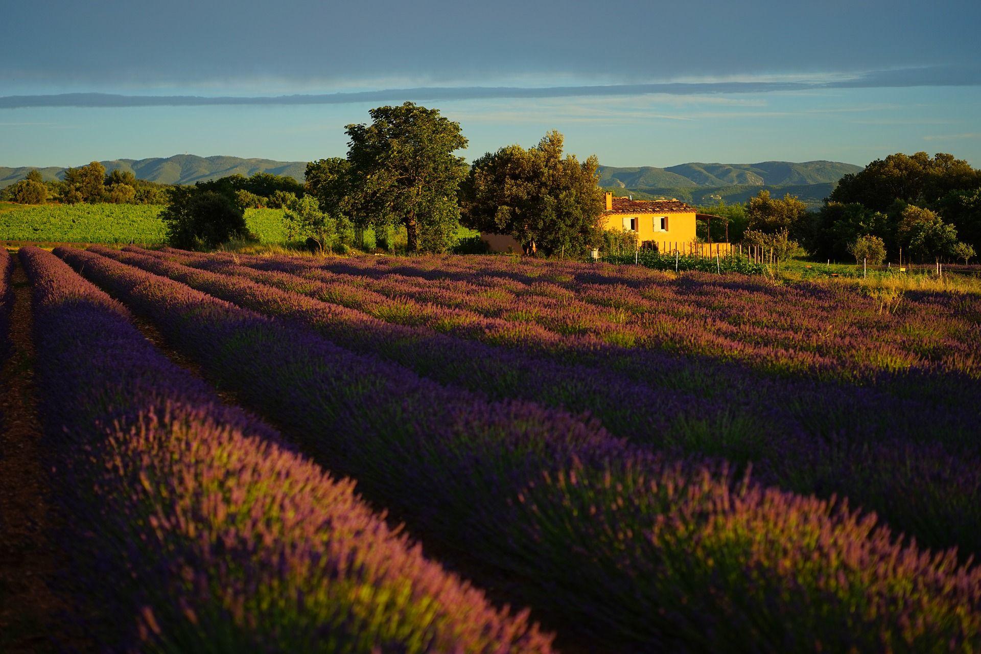Office de Tourisme Provence Occitane