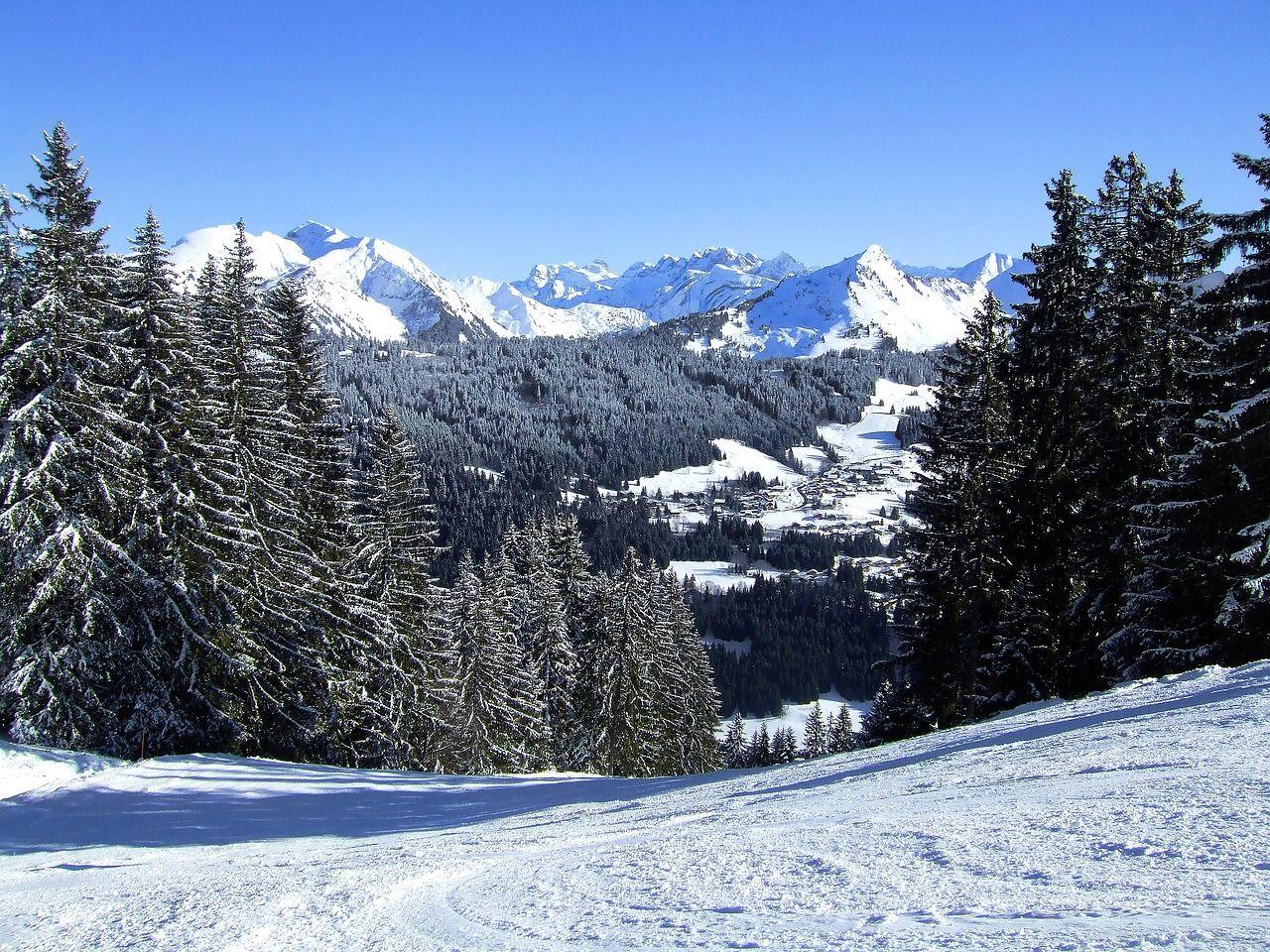STAR-Ski Sports